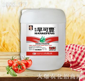 旱可丰西红柿10kg