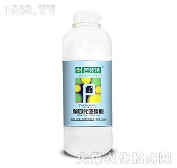 第四代亚磷酸(500g)-芭斐特