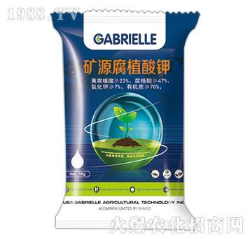 矿源腐植酸钾-盖博瑞勒