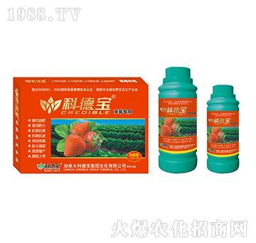 草莓专用营养增产调理剂-科德宝