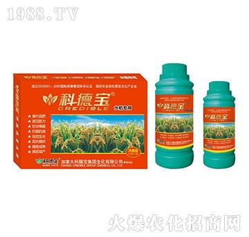 水稻专用营养增产调理剂-科德宝