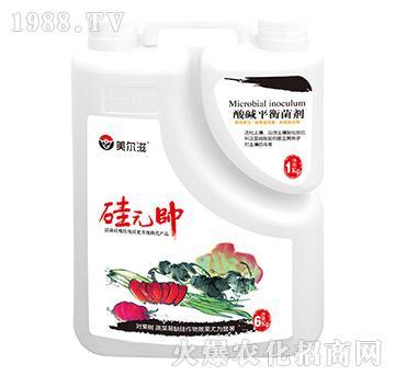 硅元��+酸碱平衡菌剂-美尔滋-东兴农业