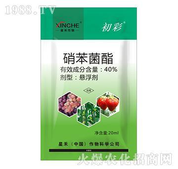 40%硝苯菌酯-初彩-星禾作物