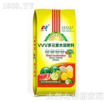 VVV多元素水溶肥料-