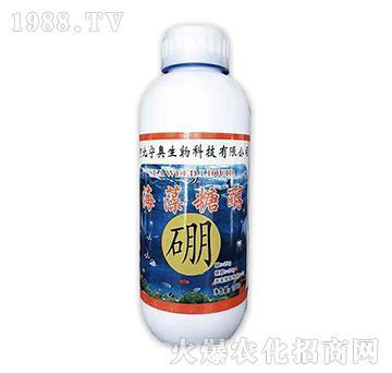 海藻糖醇硼-(1000