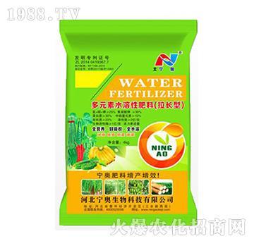 拉長型多元素水溶性肥料-寧奧生物