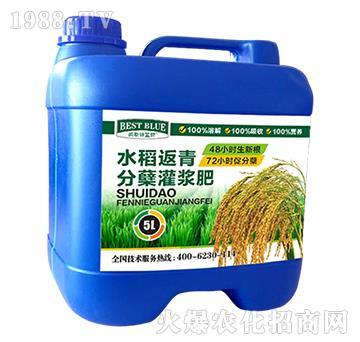 水稻返青分蘖灌浆肥-碧斯特