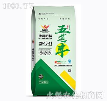 硅基・碳化酶掺混肥料28-13-11-五道丰