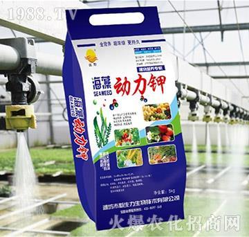 海藻动力钾-新生力