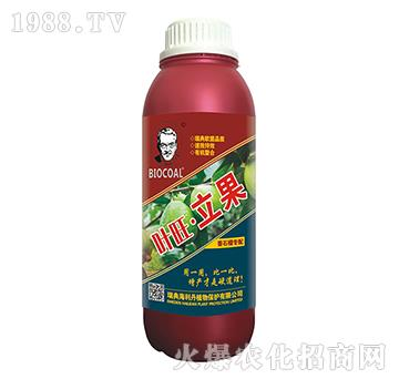 番石榴�E�-�~旺立果-(瓶)海利丹