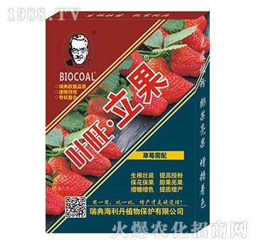 草莓�E湔{���(盒)-海利丹