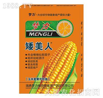 玉米套餐中轉盒-矮美人-海利丹