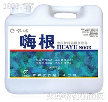 含氨基酸水溶肥料-嗨根-諾爾
