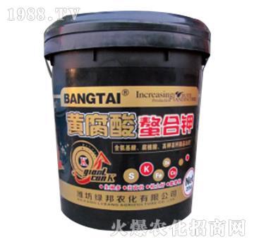 黄腐酸螯合钾-绿邦农化