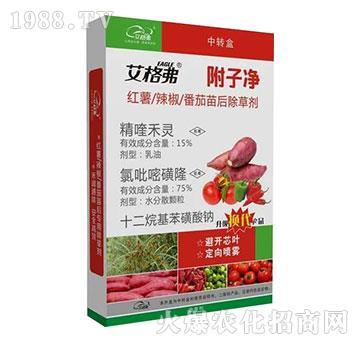 红薯辣椒番茄苗后除草剂