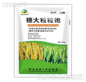 穗大粒粒饱-绿邦农化