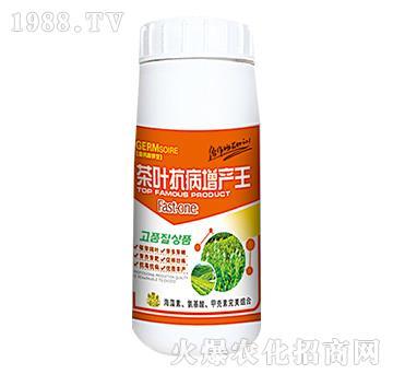 茶叶抗病增产王-绿邦农化