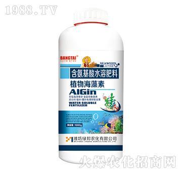 含氨基酸水溶肥料-植物海藻素-绿邦农化
