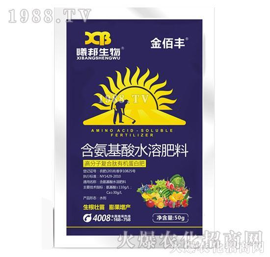 含氨基酸水溶肥料-金佰丰-曦邦生物1