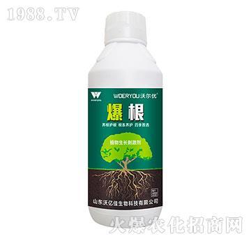 植物生长刺激剂-爆根-沃亿佳