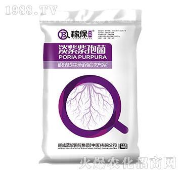 淡紫紫孢菌-稼保传奇-