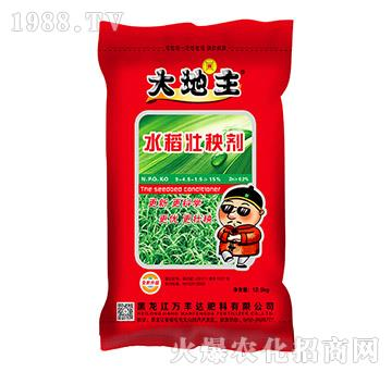 水稻壮秧剂-大地主-万丰达