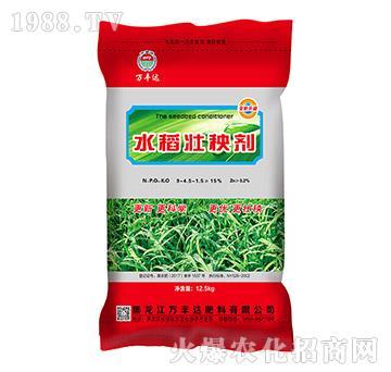 水稻壮秧剂-万丰达