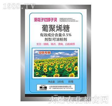 0.5%葡聚烯糖-葵花子烂脖子灵-宝丰农药