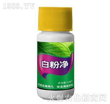 白粉病特效藥-白粉凈-施密克