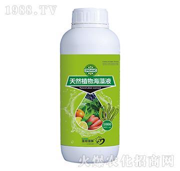 天然植物海藻液(1000ml)-菲爾普斯