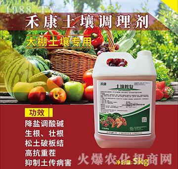 禾康大棚土壤調理劑-飛鷹綠地