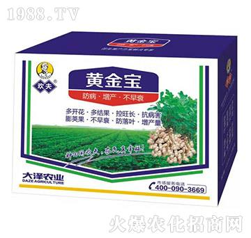 花生专用高产套餐-欢夫黄金宝-大泽农业