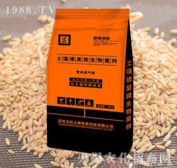 小麦专用土壤修复微生物菌剂-酸碱乘除-力松