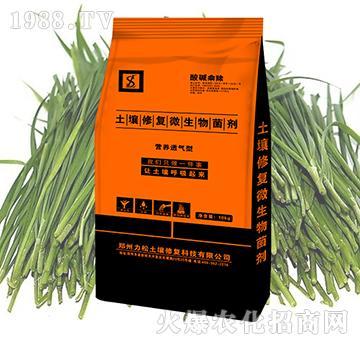 韭菜专用土壤修复微生物菌剂-酸碱乘除-力松