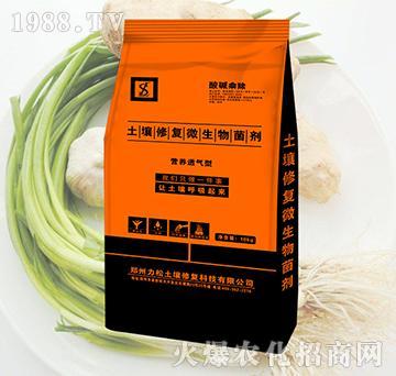 葱蒜专用土壤修复微生物菌剂-酸碱乘除-力松