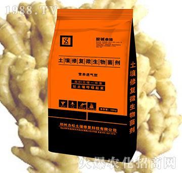 大姜专用土壤修复微生物菌剂-酸碱乘除-力松
