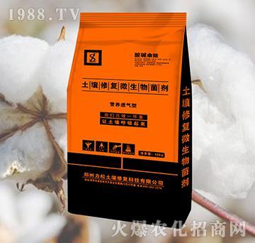 棉花专用土壤修复微生物