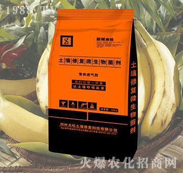 香蕉专用土壤修复微生物