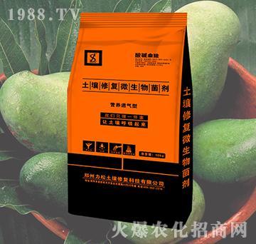 芒果专用土壤修复微生物