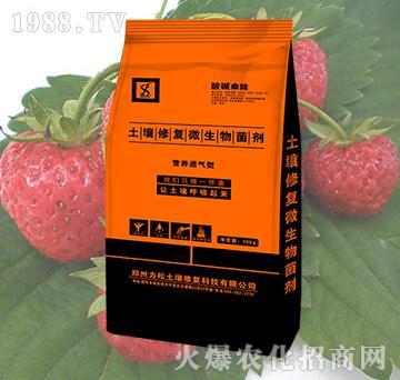 草莓专用土壤修复微生物