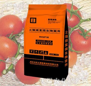 番茄专用土壤修复微生物