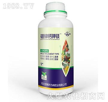 硼锌钙钾镁-为峰肥业