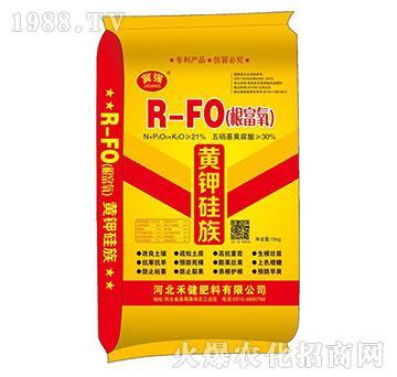 R-FO(根富氧)-黄钾硅族-禾健肥料
