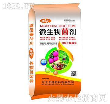 微生物菌剂-康之元-禾健肥料