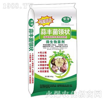 微生物菌剂-蒜丰菌令状-禾健肥料