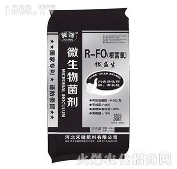 R-FO(根富氧)根益生-禾健肥料