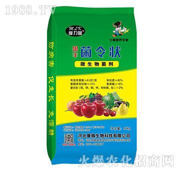 微生物菌剂-果丰菌令状-禾健肥料