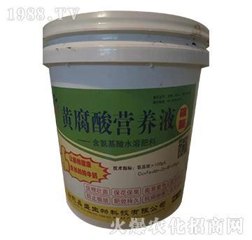 含氨基水溶肥料-黄腐酸营养液-鑫盛生物