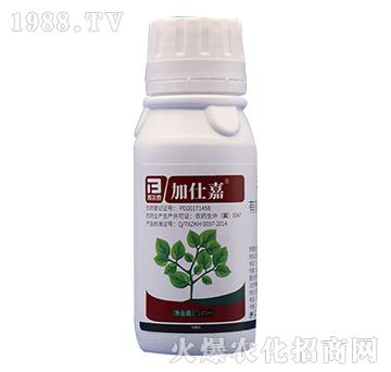 5%香芹酚-加仕嘉-邦
