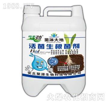 活菌生根菌剂-菌淋大地-田来劲-聚源生物
